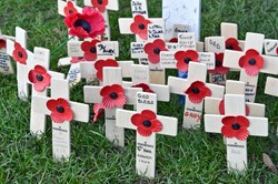 Remembrance Crosses - Garden of Remembrance Glasgow 2014